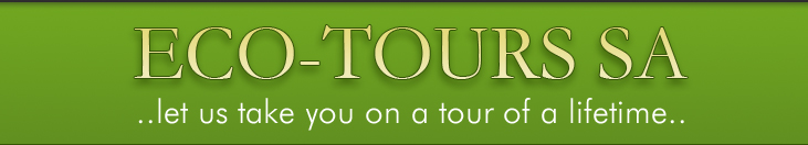 Eco Tours - Let us take your on a tour of a lifetime